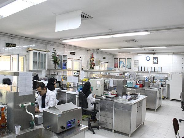 الخلايا الجذعية تشكل أرضية خصبة لخلق فرص العمل في ايران