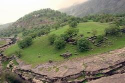 مضيق رازيانه معلم طبيعي فريد قرب مدينة ايلام (غرب ايران)