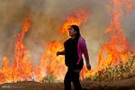 برترین تصاویر جهان ۲۵ اسفند ۹۵