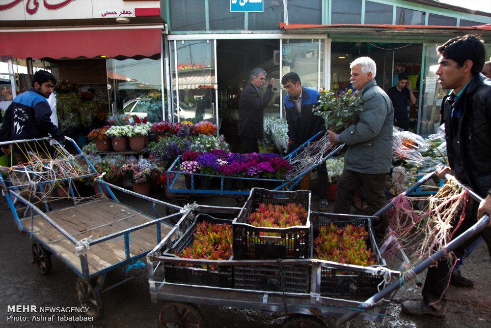 بازار گل و گیاه