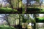 سهرورد سرزمینی ناشناخته با طبیعتی بکر و زیبا