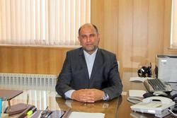 «فرزان قالیچی» رئیس دانشگاه جامع علمی کاربردی آذربایجان شرقی
