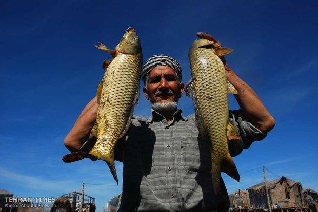 Land of affection - Golestan