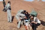 وضعیت عمومی محیطبانان مجروح شده نکایی مساعد است