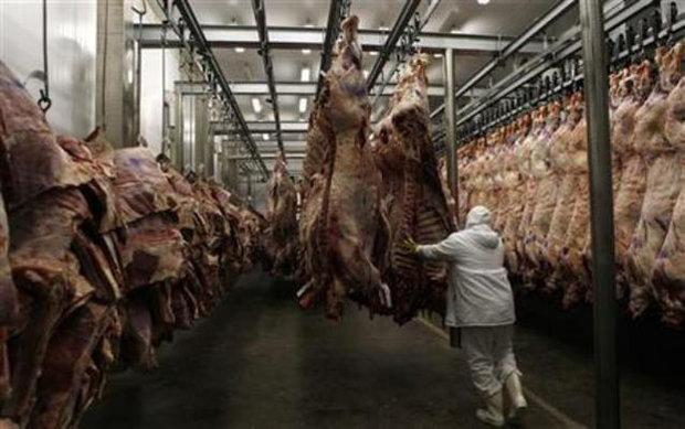 تولید ۴۴ هزار تن گوشت قرمز و مرغ طی سالجاری در زنجان