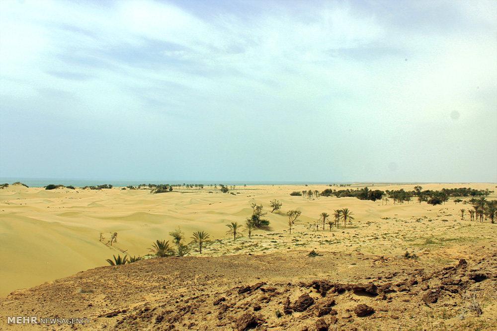 پاکیزه ترین ساحل کشور در درک زرآباد