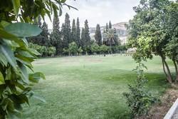 Cihannüma; Şiraz'ın en eski bahçesi