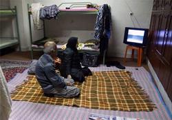 ۱۷۵۳ خانواده در محل اسکان فرهنگیان زنجان اقامت کردند