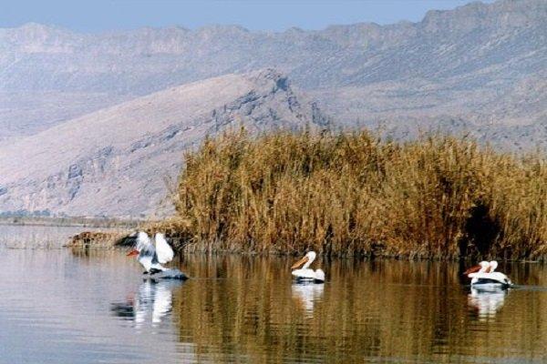 بهشت پرندگان کشور آماده حضور مهمانان نوروزی است