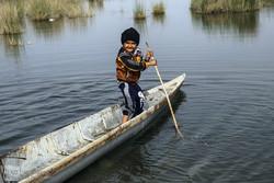 ۶۰ درصد تالاب بین المللی شادگان در بارندگی اخیر آبگیری شد
