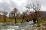 دورود؛ پایتخت طبیعت ایران