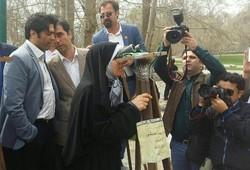 احمدی پور در کرمانشاه