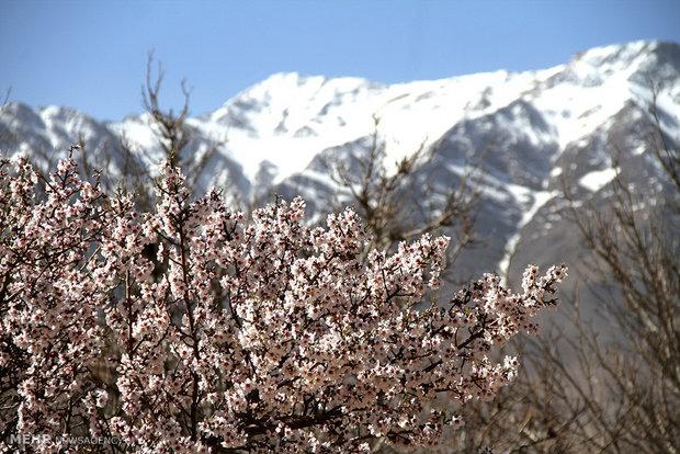 İsfahan'da Nevruz havası