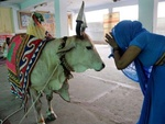 بھارت میں حیوان اور جانور کے نام  تین انسانوں کا بہیمانہ قتل