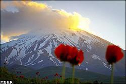 طبیعت تهران مهمانان را فرا می خواند/ ثبت خاطرات شیرین ۱۳ فروردین