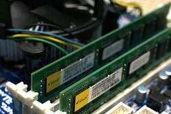زیان شرکتهای رایانهای با اجرای ناقص ارز تک نرخی/دولت پاسخگو باشد