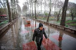 بارندگی های استان همدان ۱۳ درصد کاهش دارد