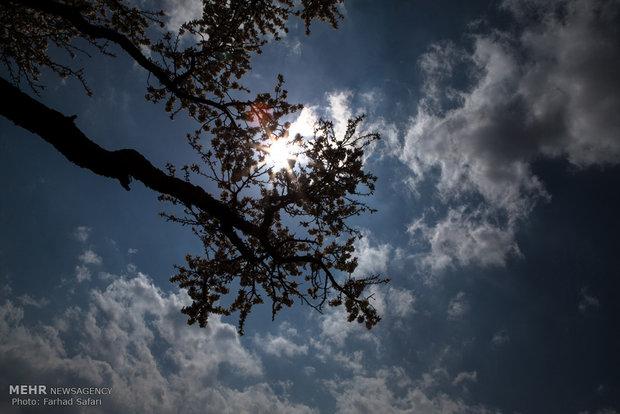 İran'da bahar havası