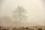 موج شن های روان زیر سایه سد «نساء»/ آسمان شرق کرمان غرق در غبار