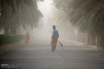 خورشید به شرق کرمان نمیتابد/ محرومیت زیر گرد و غبار و خشکسالی