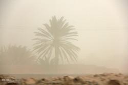 زندگی کرمانیها زیر سایه ریزگردها/ خورشید از شرق طلوع نمیکند