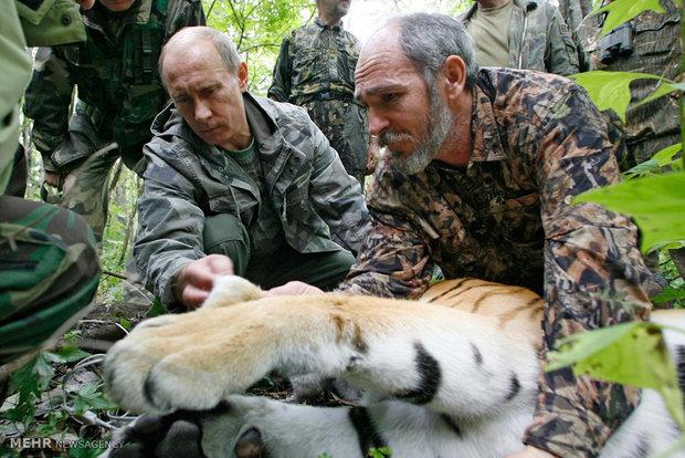 Resimlerle Putin'in dikkat çeken özellikleri