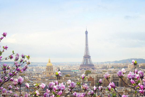 بهار در نقاط مختلف جهان