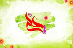 مشارکت ۲۳۰ هیئت مذهبی بوشهر در برگزاری جشن میلاد امام علی(ع)