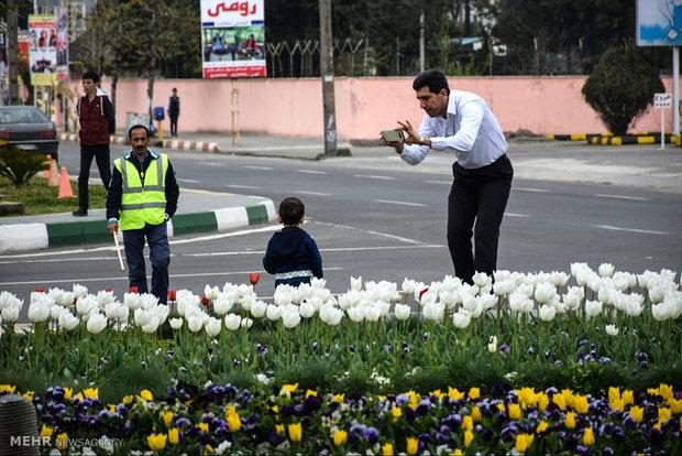 İran'ın Astara kentinden güzel manzaralar