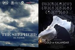 فیلمهای بخش «مهربان با محیط زیست» جشنواره جهانی فجر