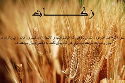 جمعآوری بیش از ۷۴ میلیارد ریال زکات در زنجان