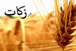 زنجان دربحث تحقق زکات جزو ۴ استان برتر در کشور است