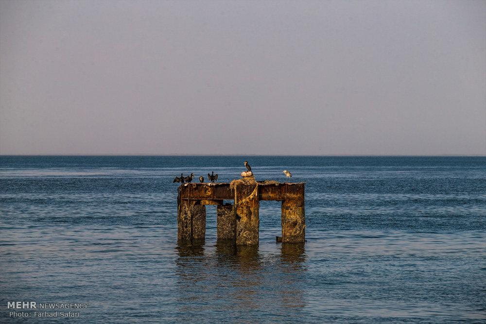 Mehr News Agency Hormuz Island