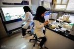 امکانات لازم در اختیار آزمایشگاه های استان همدان قرار میگیرد