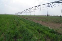 ۱۵۸هکتار اراضی کشاورزی ارومیه به سیستمهای نوین آبیاری مجهز شد