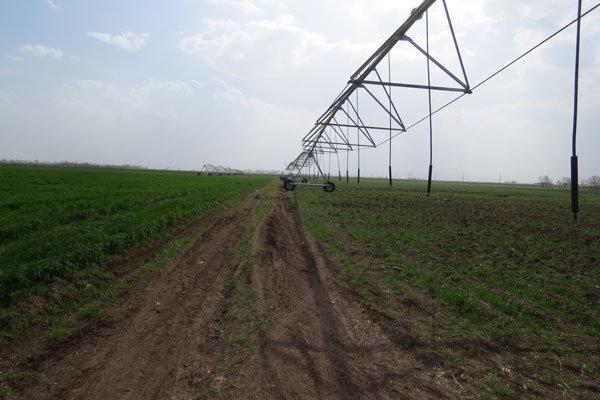 ۳هزار هکتار از اراضی کشاورزی آبیک به سامانه نوین آبیاری تجهیز شد
