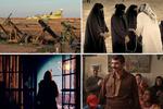 بخش زیتون های زخمی جشنواره فیلم فجر