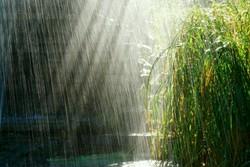 کاهش ۴ درصدی بارشها/حوضه مرزی شرق دارای کمترین بارش