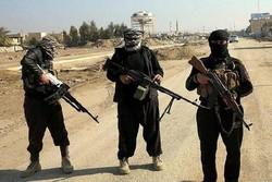 فرار تروریستهای داعش حاضر در عراق و سوریه به سمت مرزهای ترکیه