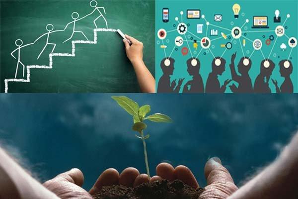 مجتبی صدیقی :حمایت وزارت علوم از طرحهای کارآفرینان
