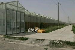 تدوین سند راهبردی پدافند غیر عامل بخش کشاورزی در کردستان