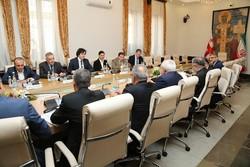 دیدار ظریف با رئیس مجلس گرجی