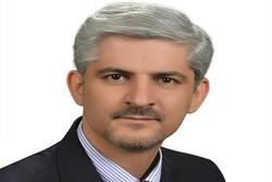 مهدی مجیدی