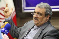 Iran's Cultural Heritage, Tourism, and Handicrafts Organization Deputy Director Morteza Rahmani-Movahed gestures as he addresses the media in an undated photo.