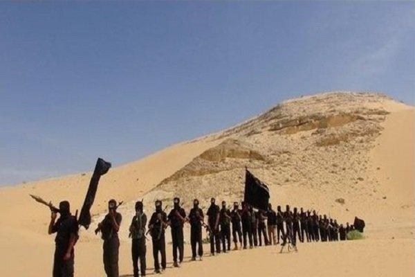 سەرکردەی نوێی داعش لە ئەفغانستان دیاری کرا