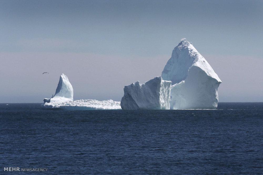 کوه یخی غول پیکر در ساحل کانادا