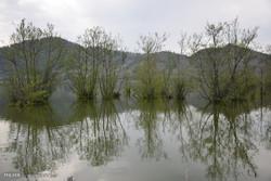 Estil Lagoon in Astara