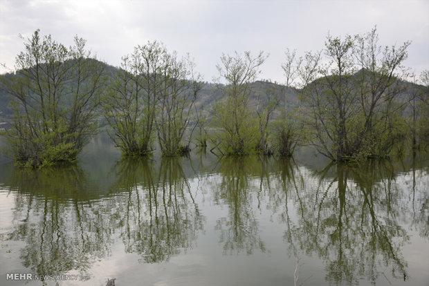 پاکسازی حاشیه تالاب استیل شهرستان مرزی آستارا