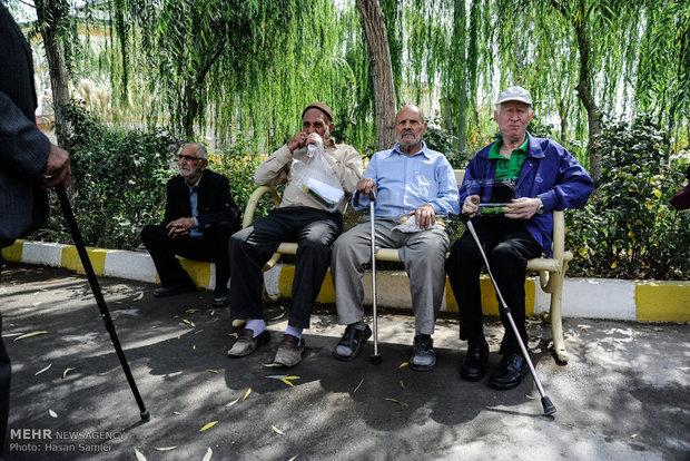 معاون مرکز آمار در گفتگو با مهر؛ افزایش خانوارهای تکنفره در ایران/ سالمندی بحران خواهد شد