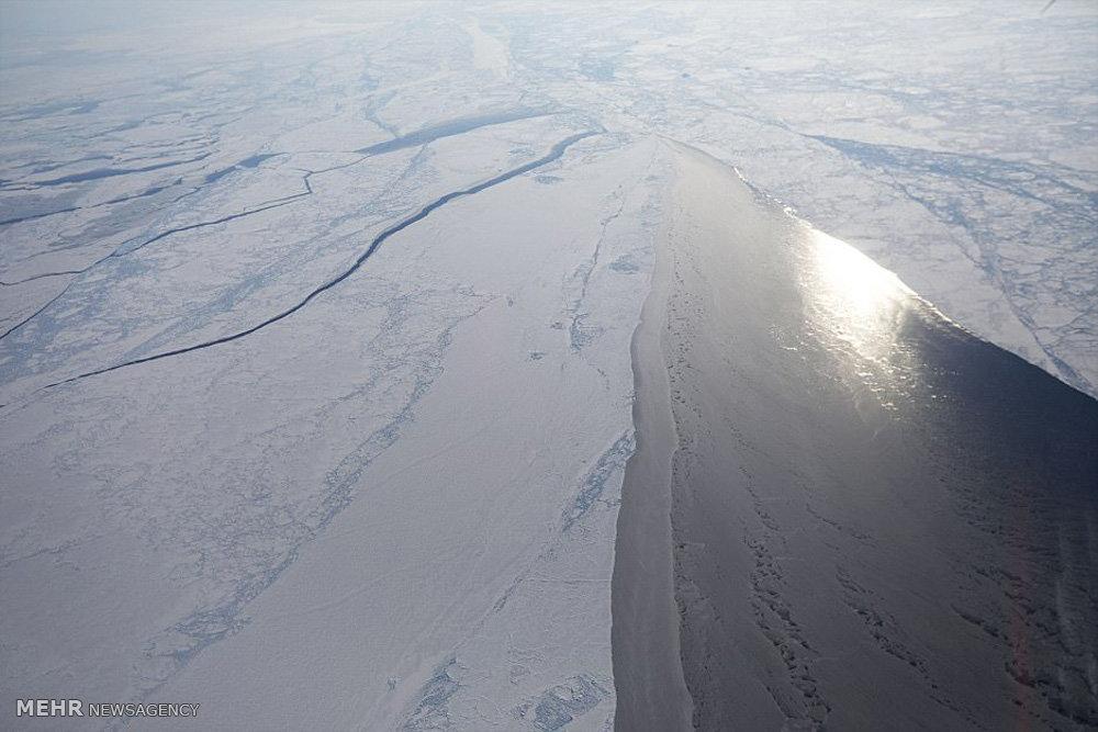 پودر یخ مو تصاویری از یخ های قطب شمال